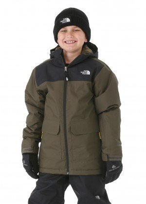 The North Face Boys Freedom Insulated Jacket - WinterKids.com